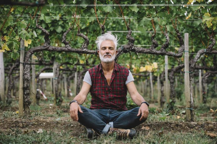 Marco Simonit, famous master of pruning, invites Italians to rediscover the work in the vineyard, a valid alternative for all those who have lost their job because of the coronavirus crisis. The founder of the Italian School of vine pruning points out that